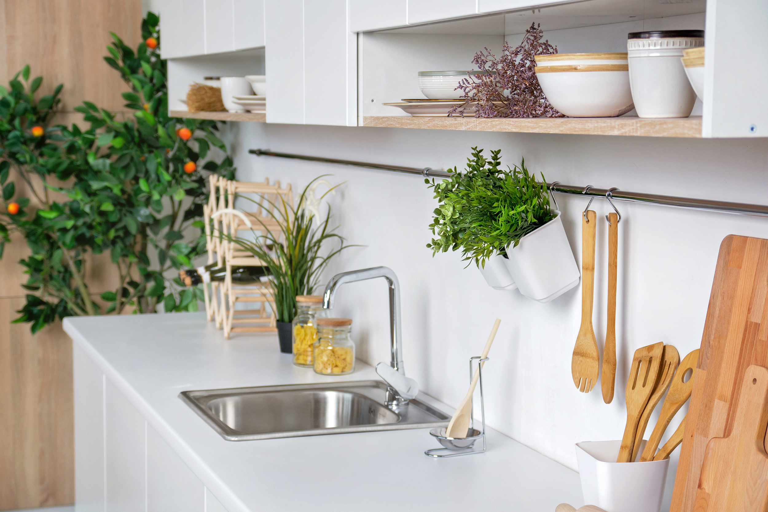 Plants on the White Custom Kitchen   Oasis Kitchens